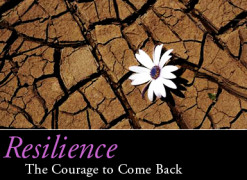 Resilience, the Key to Success in Life.